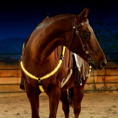 Lighted Breast Collars