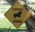 Clydesdale Crossing